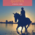 The Best Horse Riding Quotes Etravel Blog
