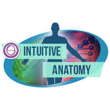 thetahealing - anatomie intuitive - chantal mallet - être soi