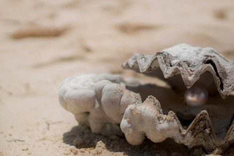 huitre-perle - Dominique Jeanneret - Réunion - Être Soi