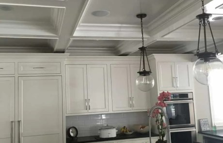 Surround Sound Ceiling Mount Speakers-Etronics of Illinois