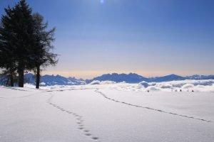 impronti nella neve con vista sulle dolomiti