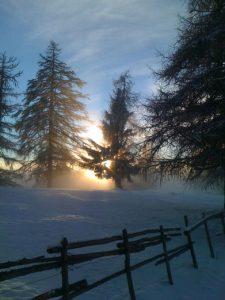 paesaggio invernale salto sole serale tra i larici