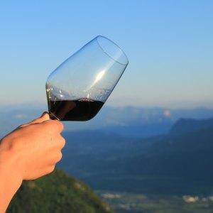 bicchiere di vino con vino rosso val d'adige
