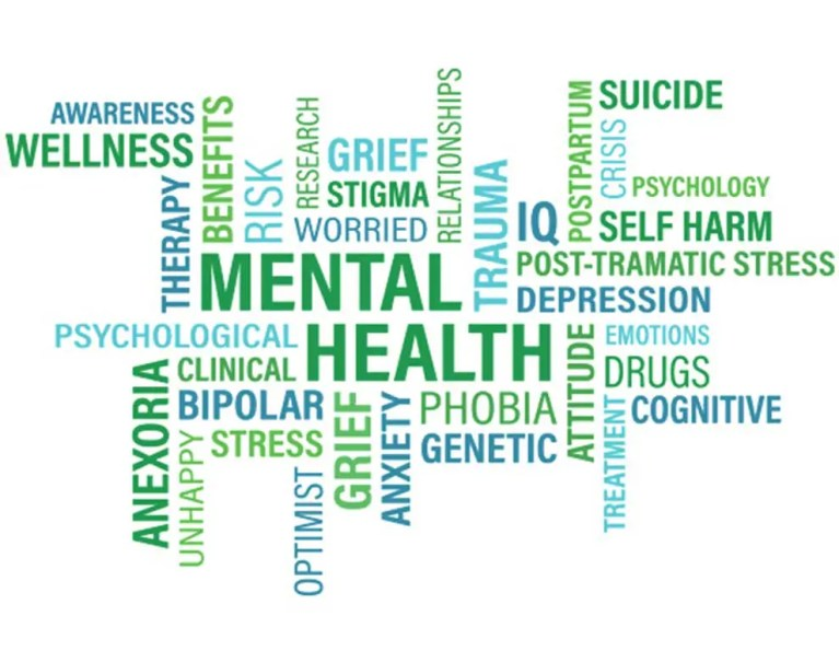Mental Health E-Learning Training Course