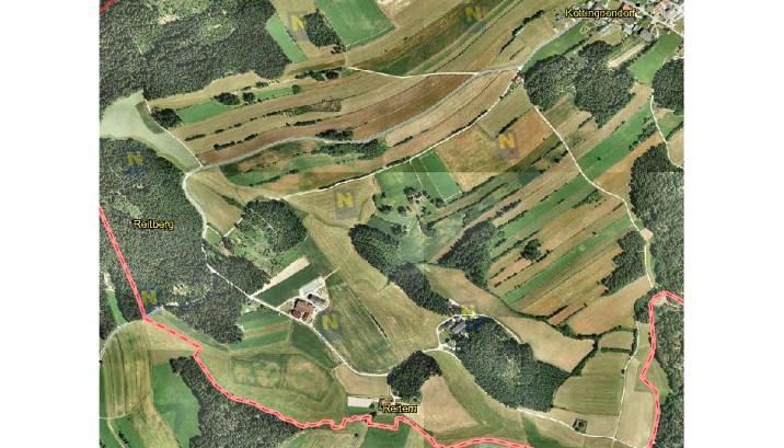 Reitern von oben (c) Land Niederösterreich, NÖ Atlas