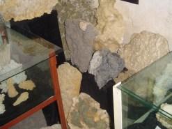 Muzeul Mineralogic Constantin Gruescu- (13)