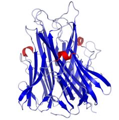 tnfa_crystal_structure