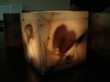 Κυβικό Κερί Εύκηρος με Θέμα Μήλα