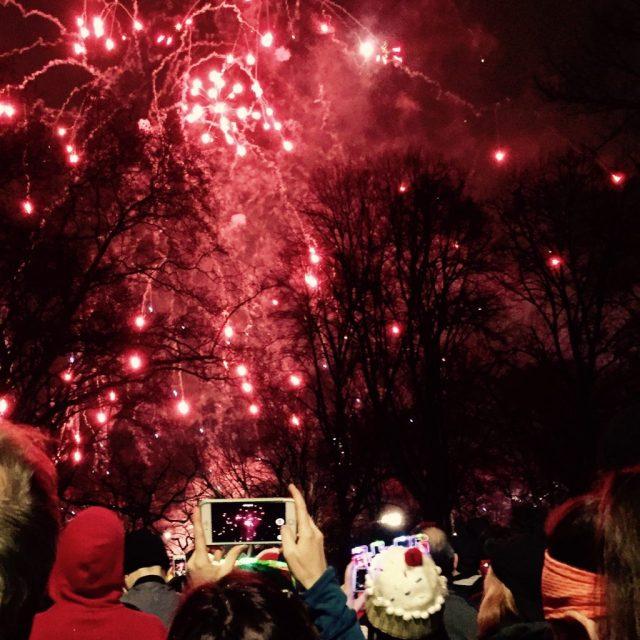 Fogos de artifício no Central Park - Ano Novo 2016