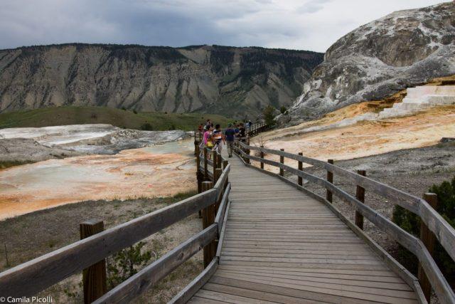 Parque Nacional Yellowstone-14