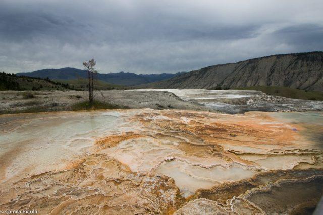 Parque Nacional Yellowstone-15