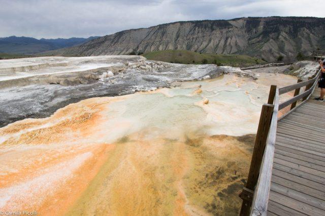 Parque Nacional Yellowstone-18