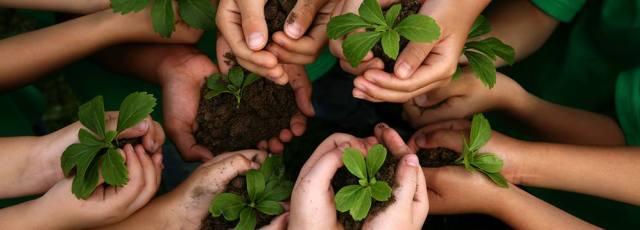 Contra a Educação Ambiental ser uma disciplina nas escolas