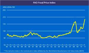 World Food Price Index