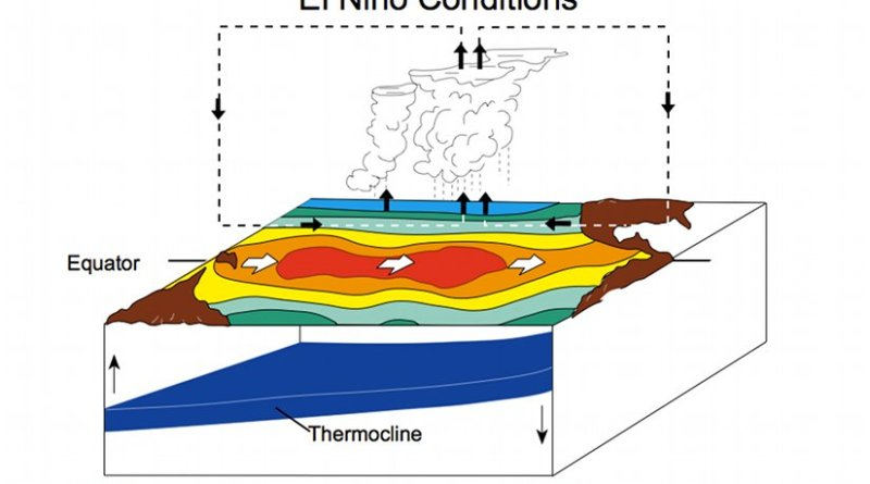 El Niño Conditions. Graphic by Fred the Oyster, Wikipedia Commons.