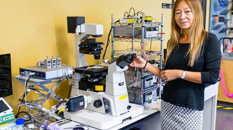 Prof. Amy Shen in the lab of the Micro/Bio/Nanofluidics Unit at OIST