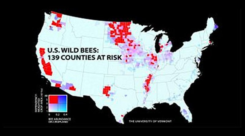 A new study of wild bees identifies 139 counties in key agricultural regions of California, the Pacific Northwest, the upper Midwest and Great Plains, west Texas, and the southern Mississippi River valley that have the most worrisome mismatch between falling wild bee supply and rising crop pollination demand. The study and map were published in the Proceedings of the National Academy of Sciences, and led by scientists at the University of Vermont. Credit PNAS (DOI: 10.1073/pnas.1517685113)