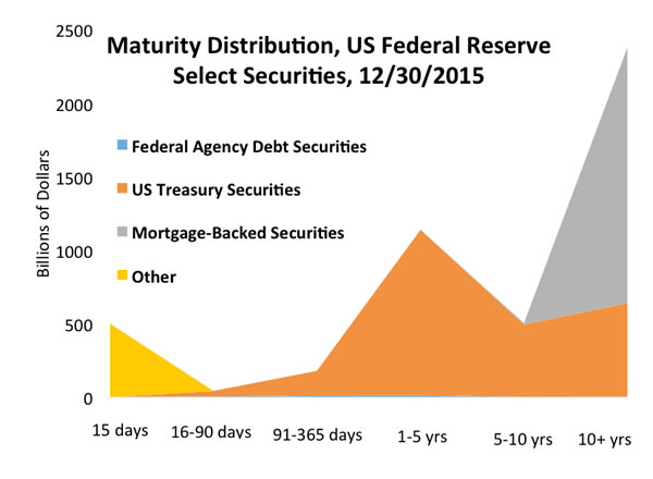 Gray area: The 2007-2008 debt crisis prompted the US Federal Reserve to try new ways to encourage spending and investment; adding mortgage-backed securities to the balance sheets increased the central bank's holdings that mature in 10 years or more (Federal Reserve data)