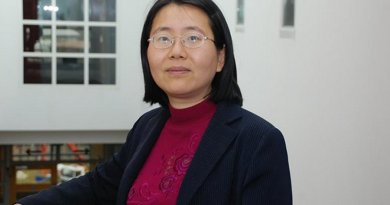 Professor Minhua Ma