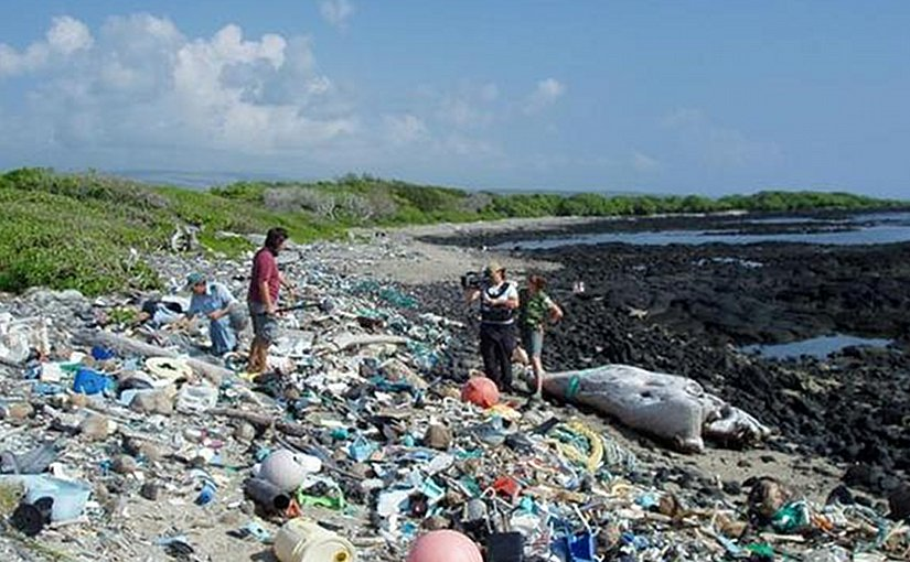 Marine debris on Kamilo Beach, Hawaii, washed up from the Great Pacific Garbage Patch. Photo Credit: Algalita.org, Wikipedia Commons.