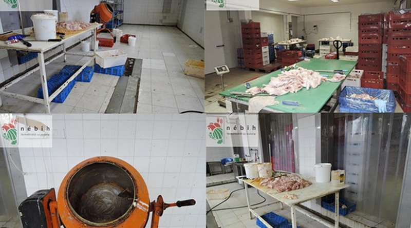 Products seized in joint Interpol-Europe operation. Photo Credit: Interpol.
