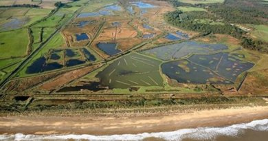 Minsmere, one of the case study locations