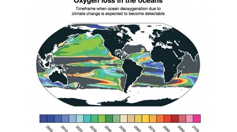 Deoxgenation due to climate change is already detectable in some parts of the ocean. New research from NCAR finds that it will likely become widespread between 2030 and 2040. Other parts of the ocean, shown in gray, will not have detectable loss of oxygen due to climate change even by 2100. Credit Matthew Long, NCAR.