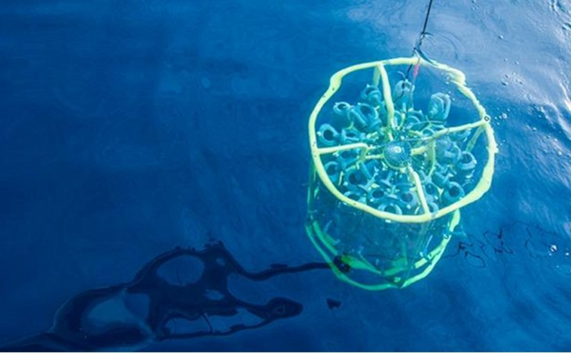 This is a rosette going into the water in Bermuda to sample SAR11. Credit Ben Temperton