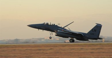 A U.S. Air Force F-15E Strike Eagle lands at Incirlik Air Base, Turkey, Nov. 12, 2015. Six F-15E's deployed to Incirlik from the 48th Fighter Wing based at RAF Lakenheath, England, to conduct missions in support of Operation Inherent Resolve. Turkish airspace was closed to military operations following an attempted coup July 15, 2016. Pentagon officials said all indications are that all personnel at the base are safe and secure. Air Force photo by Airman 1st Class Daniel Lile