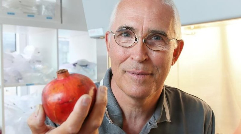 EPFL researcher and last author Johan Auwerx is pictured. Credit © EPFL / Alain Herzog