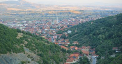 Presevo. Photo by Julian Nitzsche, Wikipedia Commons.