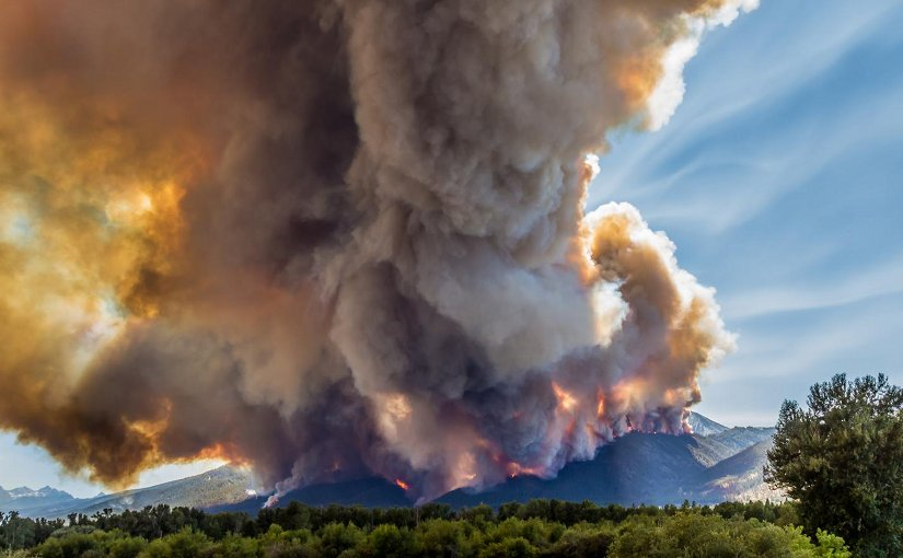 In July and August, the Roaring Lion fire devoured more than 8,000 acres of forest, along with over 60 homes and outbuildings in eastern Montana's Bitterroot Range. Here, the fire burns through dense conifers, July 31, 2016. Credit Mike Daniels