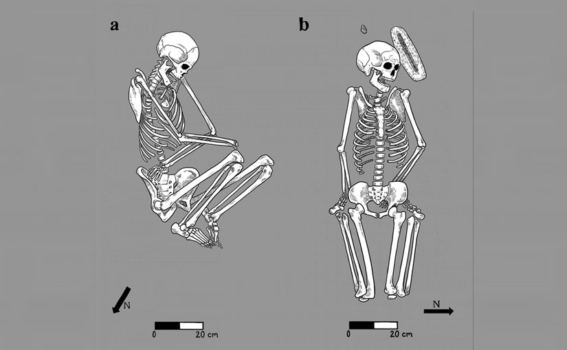 Bodies buried by family members were arranged in a flexed position on their side (left), while in atypical burials, bodies were left in more awkward positions (right). Credit Illustration by Caitlin McPherson