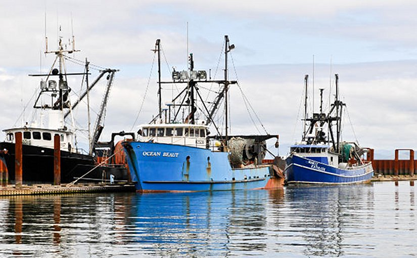 Fishing fleet in Astoria, Oregon (USA).