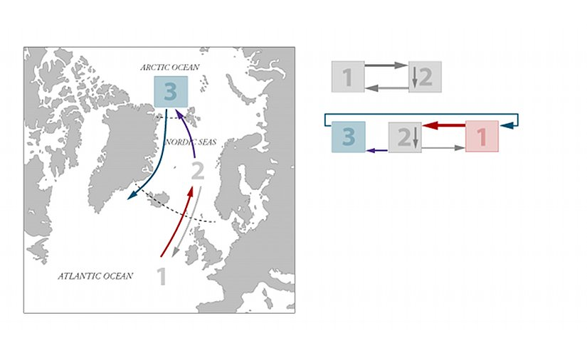 Freshwater from precipitation and run-off to the Arctic Ocean flows south near the surface along the east coast of Greenland, through the Nordic Seas and into the Atlantic Ocean (blue arrow). This current also drags some of the water below with it, and more water must flow in from the Atlantic to regain the balance (purple arrow). The flow of freshwater out of the Arctic Ocean thus enhances the circulation in the Atlantic Ocean.