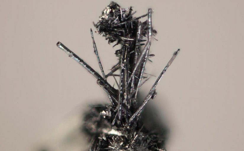 The tiny, silvery, cylindrical whiskers are a new mineral --merelaniite -- named for a mining region in Tanzania. Credit Michigan Tech, John Jaszczak