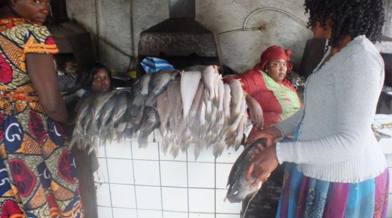 Women barbecuing fish. Credit: Ngala Killian Chimtom | IDN-INPS