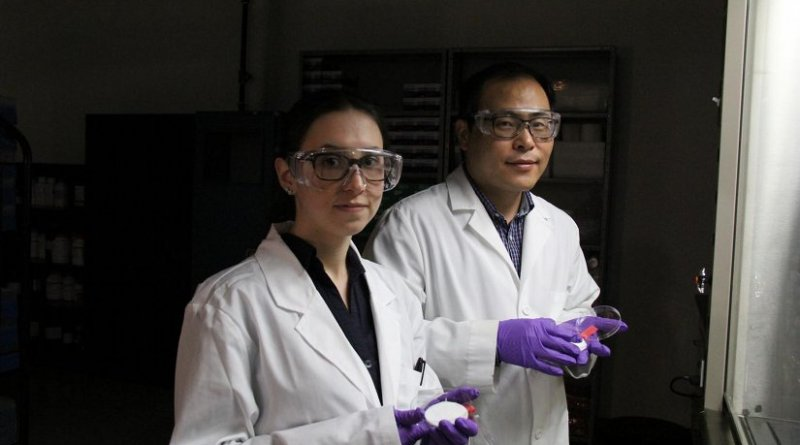 UAlberta materials engineering professor Hyo-Jick Choi (right) and graduate student Ilaria Rubino examine sample of filters treated with a solution that kills viruses. Choi and his research team have devised a way to improve the filters in surgical masks so they can trap and kill airborne pathogens. Credit UAlberta.ca