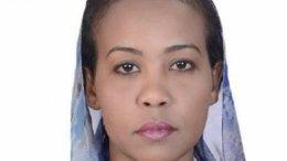 Shamael al-Nur, photo Sudan Tribune