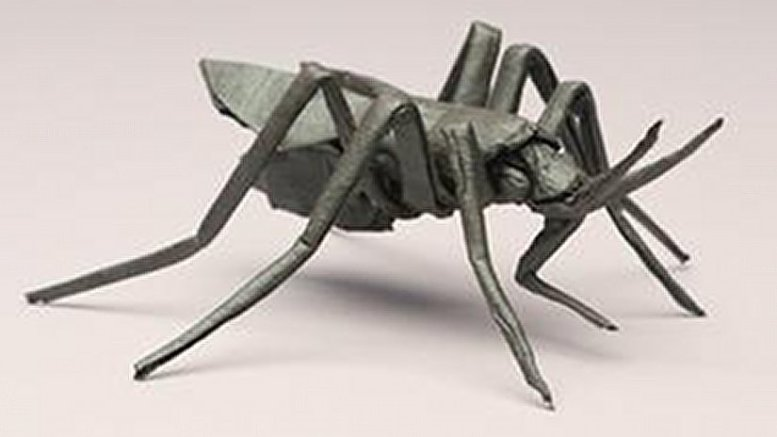 A multi-institutional team has sequenced the genome of the mosquito that transmits the Zika virus uisng a new way to sequence the genome of an organism entirely from scratch, dramatically cheaper and faster. Credit Robert Lang