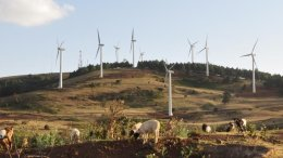 Ngong Hills Wind Farm in Nairobi, Kenya, sited close to where there is significant demand for electricity (Nairobi) and near existing infrastructure, is a good example of multiple land uses for recreation (a popular hiking area for locals), energy generation, and livestock grazing. Credit Grace Wu/Berkeley Lab
