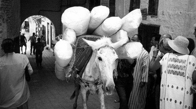 Scene in Old Market in Medina, Morocco.
