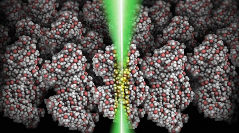 This is a schematic showing a focused electron beam (green) shining through a polymeric film (grey: carbon atoms; red: oxygen atoms; white: hydrogen atoms). The glowing area (yellow) indicates the molecular volume chemically modified by the focused electron beam. Credit Brookhaven National Laboratory