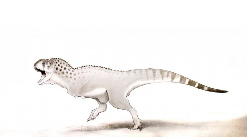 This is a Chenanisaurus barbaricus Credit Dr Nick Longrich, Milner Centre for Evolution, University of Bath
