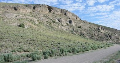 This is the outcrop of the Upper Ordovician studied at Monitor Range in Nevada. Credit David S. Jones
