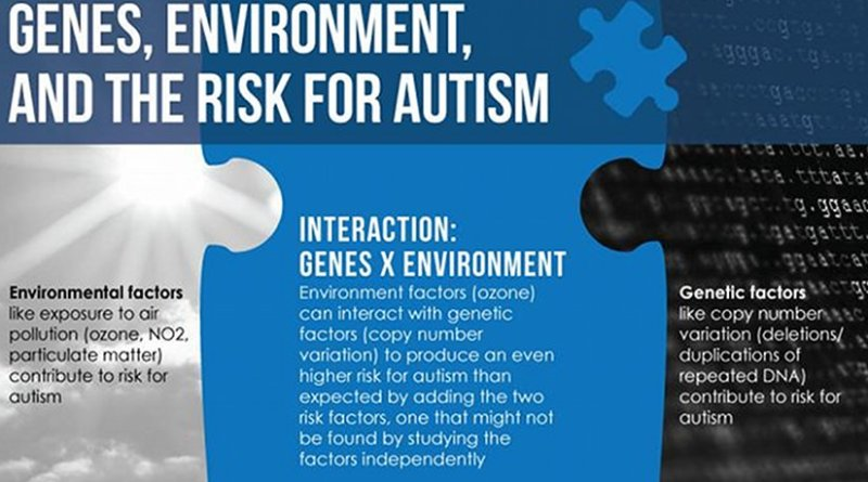 Genes, Environment, and the Risk for Autism: Environment factors (ozone) can interact with genetic factors (copy number variation) to produce an even higher risk for autism than expected by adding the two risk factors, one that might not be found by studying the factors independently. Credit Penn State University