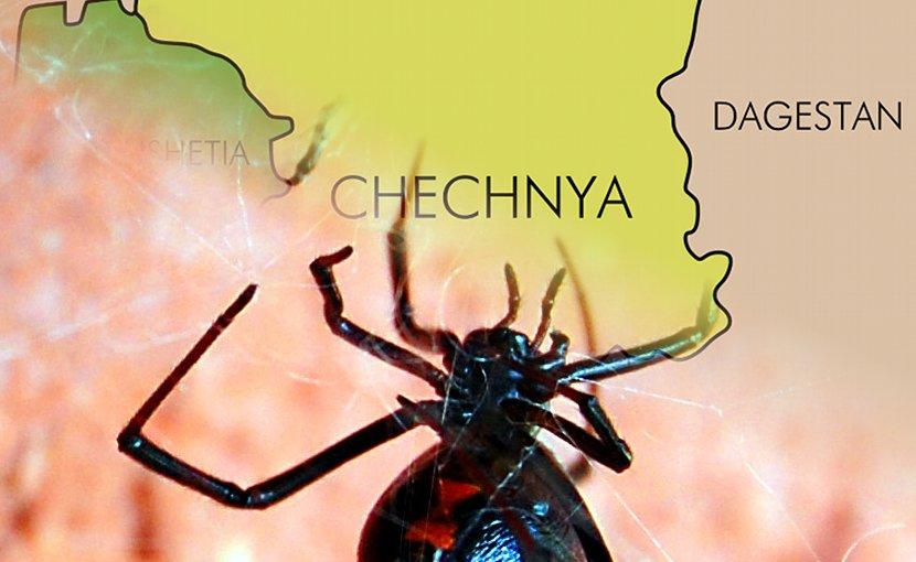 Black Widow chechnya terrorism
