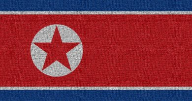 North Korea's flag