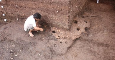 Vietnam: Ancient Trading Network Discovered