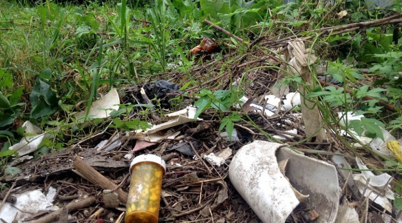 Pharmaceutical and personal care product pollution is common in freshwaters throughout the US. Credit AJ Reisinger